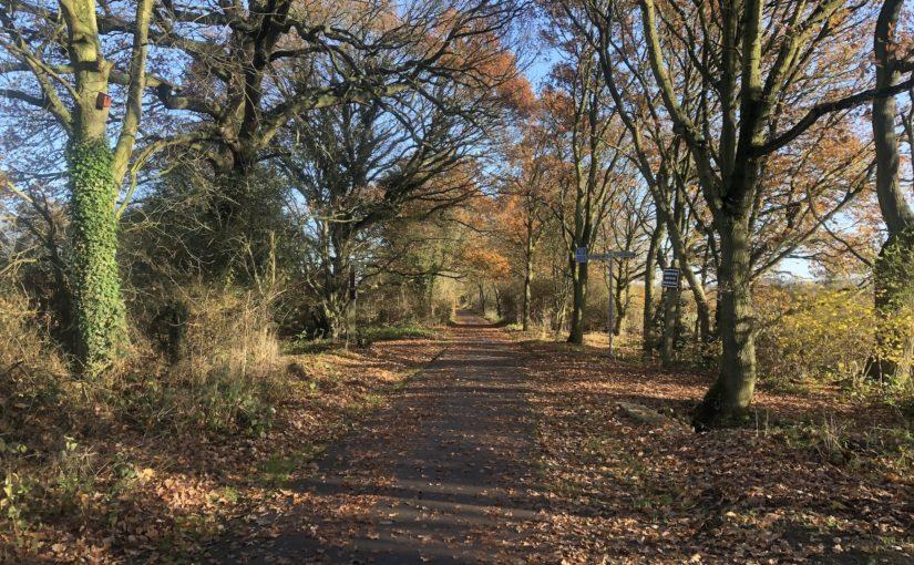 Hertfordshire Wanderings